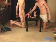 Three great lovely twinks having a games gays