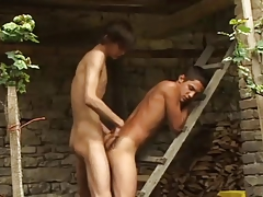 Boys riding cocks outdoor